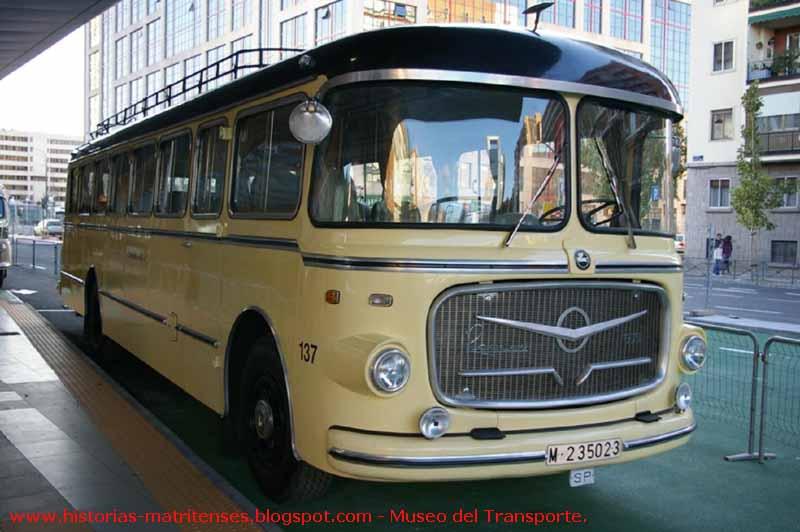 autobus continental.jpg